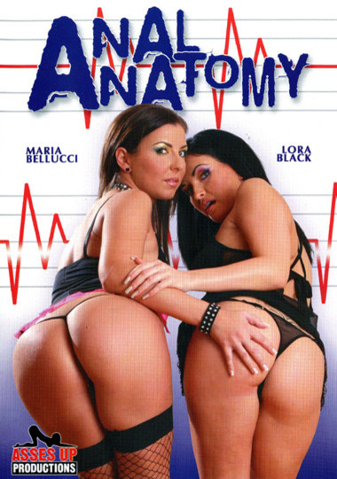 Anal Anatomy
