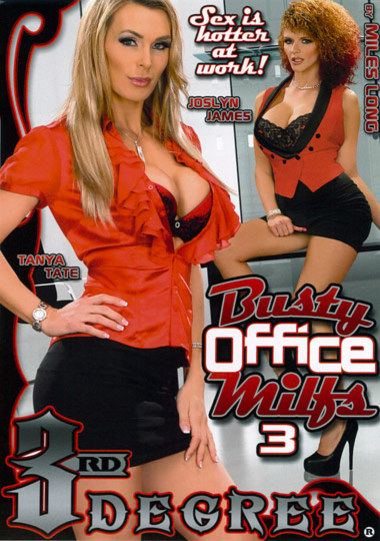Busty Office MILF's #3