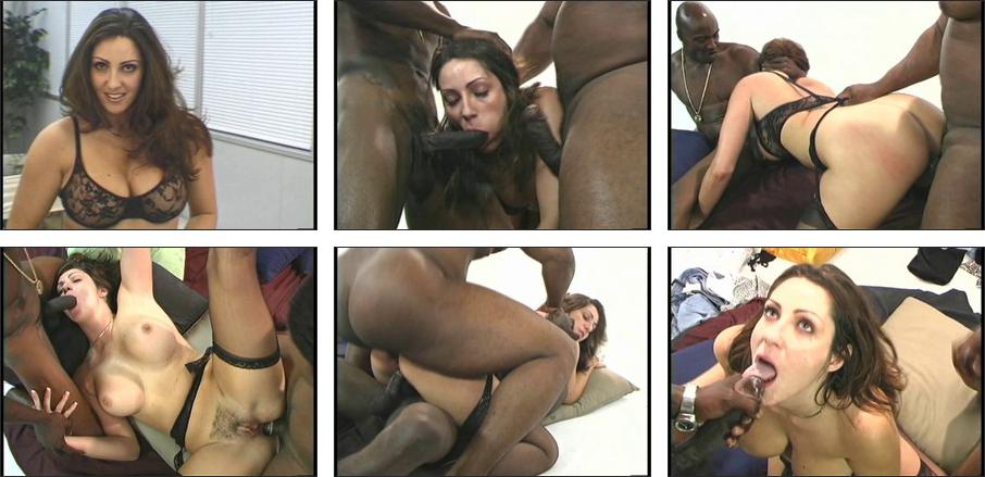 Theme, tasha hunter interracial sorry, can