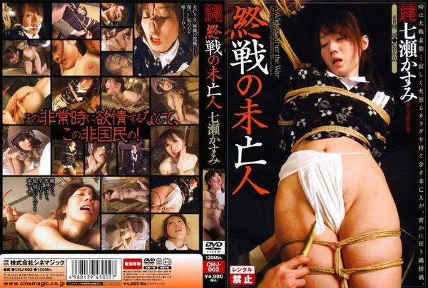 rape-bdsm-na-dvd