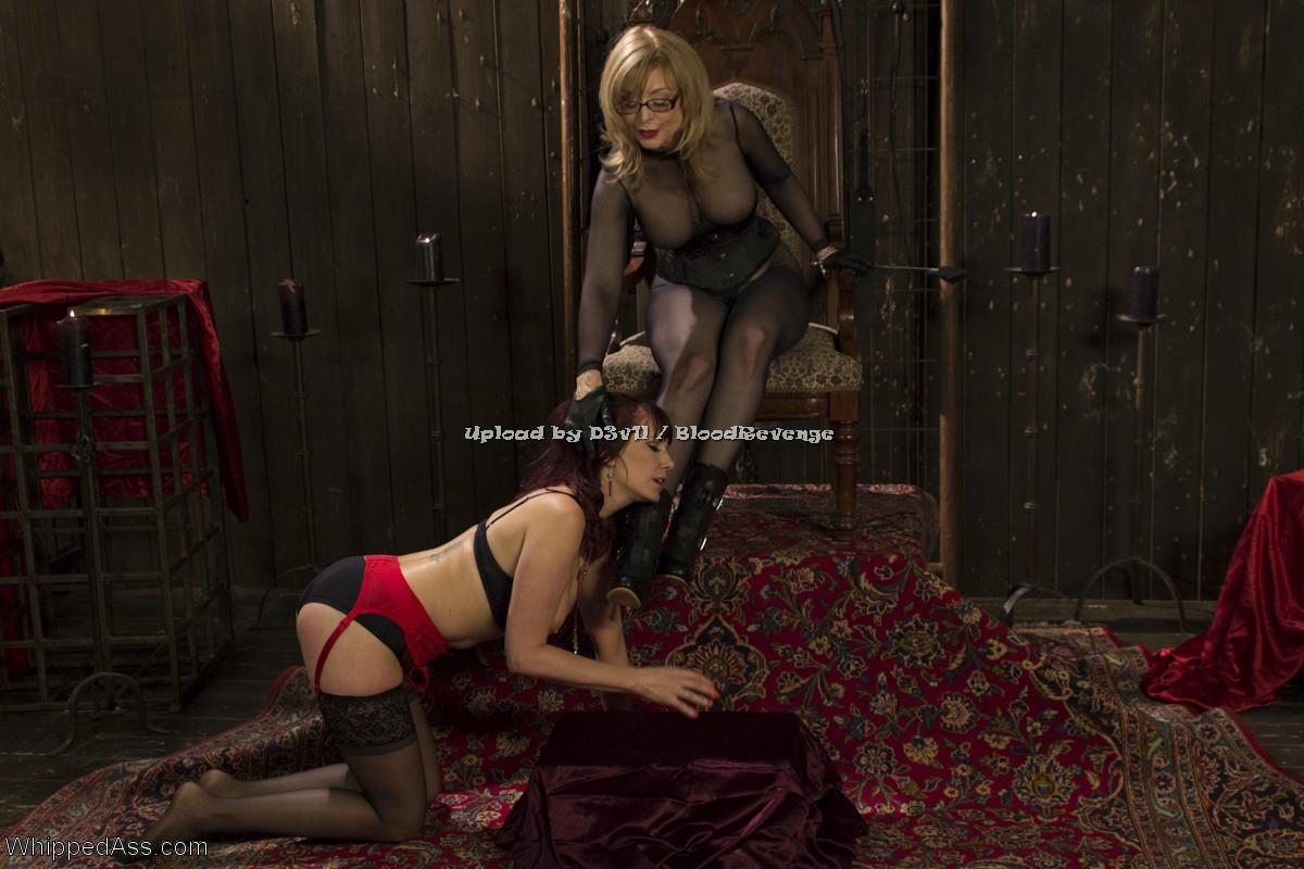 Erotic sensual exceprts