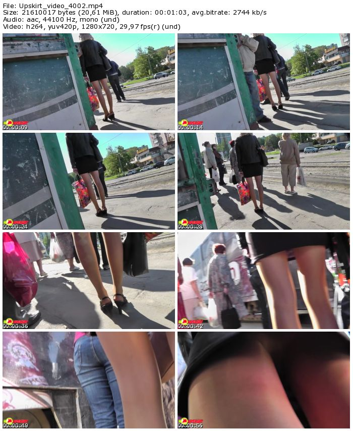 Upskirt Video Download 42