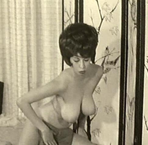 Vintage retro porn archive something