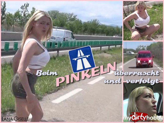http://s5.depic.me/01781/oxm6hjzvpthy_o/the_pee_test___how_safe_highways_are_really_lana_giselle.jpg