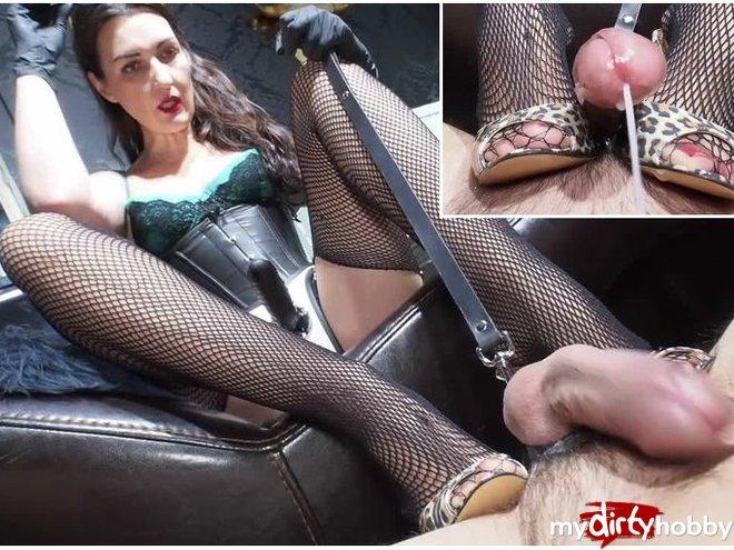 http://s5.depic.me/01890/nd8b9f174j8b_o/ruined_orgasm_and_small_penis_lady_victoria.jpg